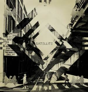 satellite-calling-birds-review