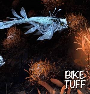 bike-tuff-into-shore-review
