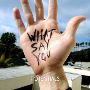 what-say-you-potentials-review