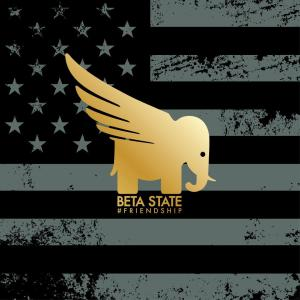 beta-state-friendship-review
