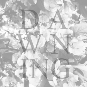 our-lady-dawning-review